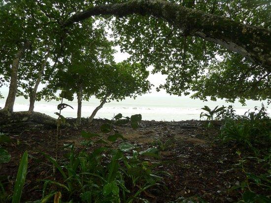 El Encanto Inn: Parque Nacional de Cahuita