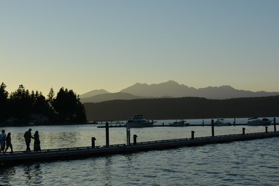 Alderbrook Resort & Spa : Mountain back drop