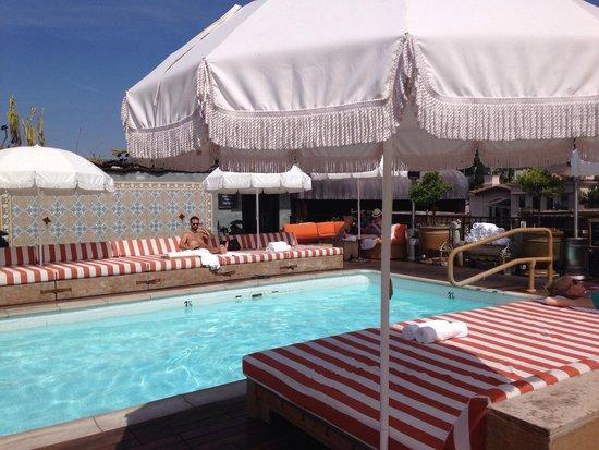 Swimming Pool Picture Of Petit Ermitage West Hollywood Tripadvisor