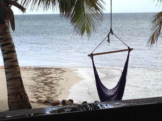 Hatchet Caye Resort: Relax in a hammock