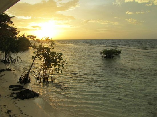 Hatchet Caye Resort: Morning comes to the Caye