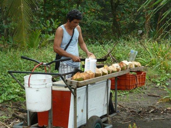 Pachira Lodge: Indigena vendiendo Cocos