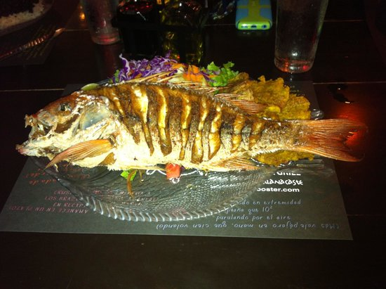 Father Rooster Beachfront Bar & Grill : Red snapper: Fish of the Day.  Delicious!