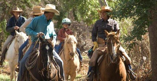 Circle Z Ranch: activities
