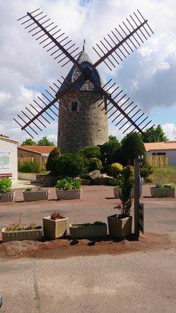 Camping le Moulin de la Salle : l'entrée