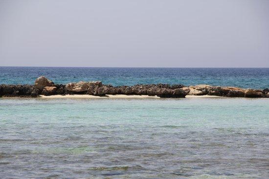 Ayia Thekla Beach: Вид из моря на риф