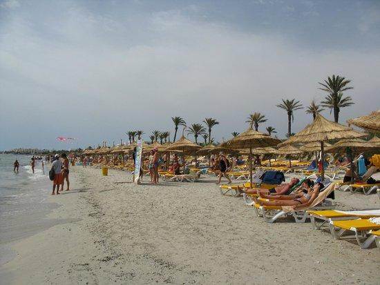 Nour Palace Resort : Na hotelowej plaży