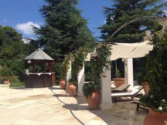 Relais Villa San Martino: Pool area