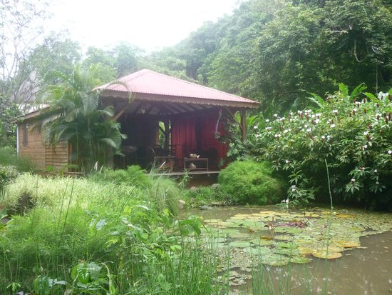 West Indies Cottage : le carbet