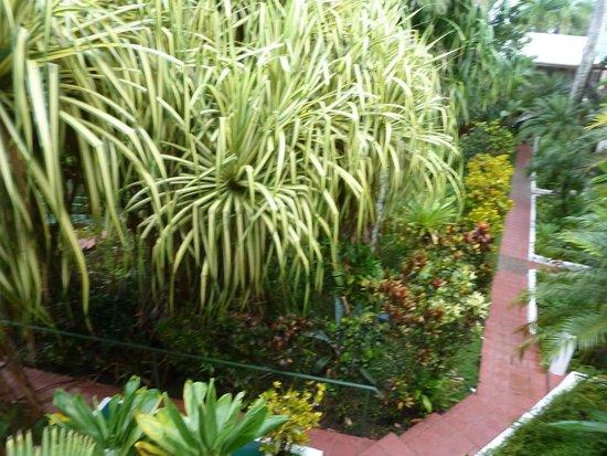Falls Resort at Manuel Antonio: Jardin del hotel