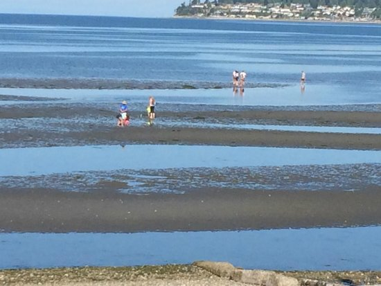 Sandcastle at Birch Bay: Families in the bay at low tide.