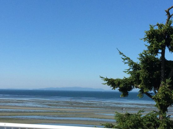 Sandcastle at Birch Bay: View of Birch Bay from the 5th floor.