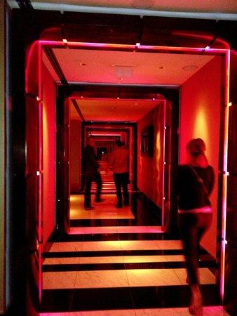 Hilton Prague: Accès au Sky Bar