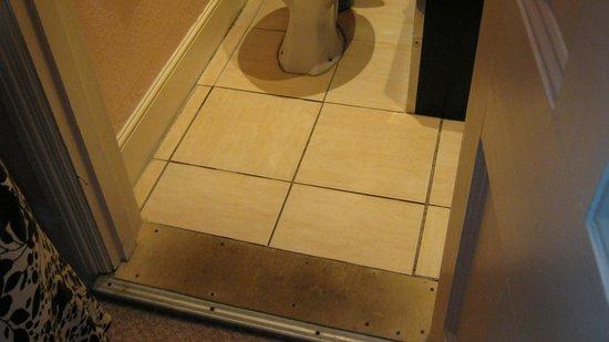 Holliers Hotel: Bathroom floor