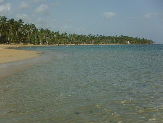 Grand Bahia Principe El Portillo : La playa por la mañana