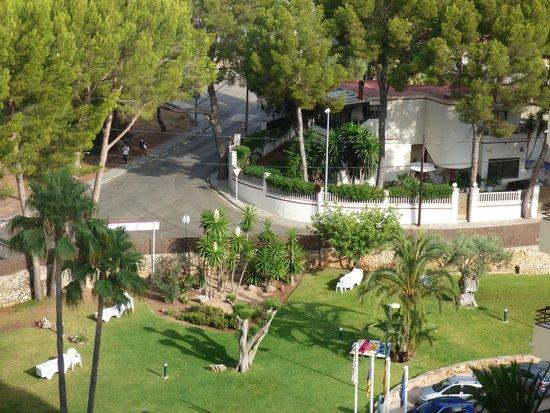 BQ Belvedere Hotel: espace vert près de la piscine