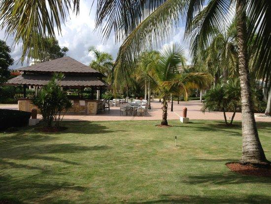 Dreams Punta Cana Resort & Spa: The Veranda Bar ( night time )