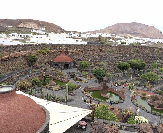 Jardin de Cactus : Vista general