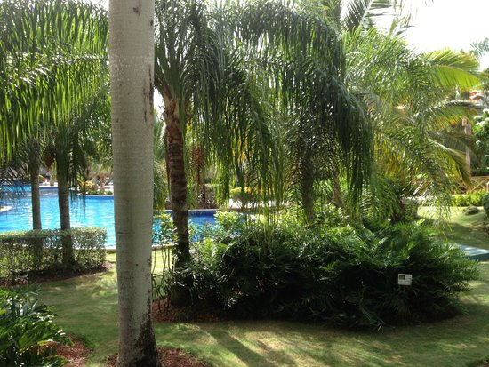 Dreams Punta Cana Resort & Spa: the very beginning of the pool as you walk to building #5