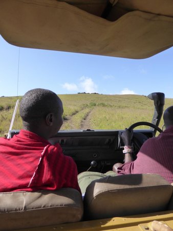 Campi ya Kanzi: game drive with great guides