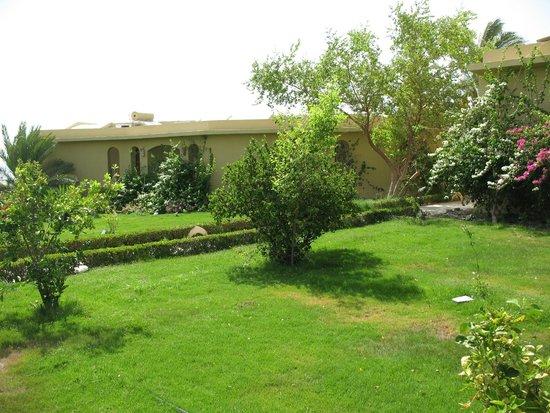 Three Corners Fayrouz Plaza Beach Resort : bloc de bungalows