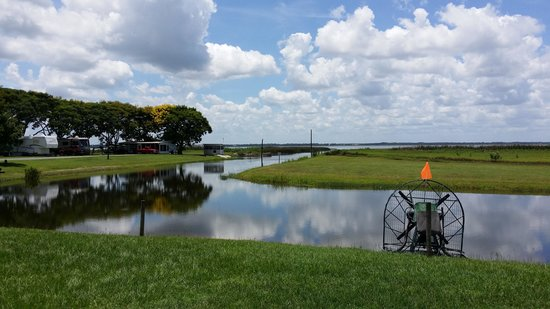 Wild Willy's Airboat Tours: The view is beautiful
