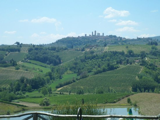 Walkabout Florence Tours: Views to vinyard