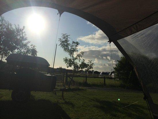 Warcombe Farm Camping Park: campsite
