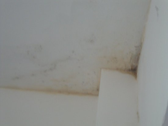 Chelsea House Hotel : Mould...this is everywhere!