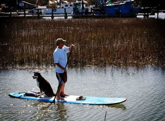 Nature Adventures: Come paddle with a friend!