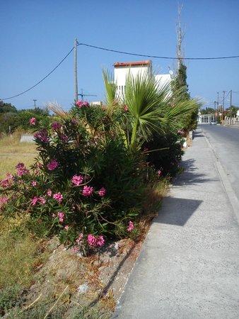 Evi Hotel Rhodes: cesta k moři