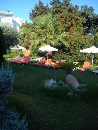 Evi Hotel Rhodes: zahrada u bazenu