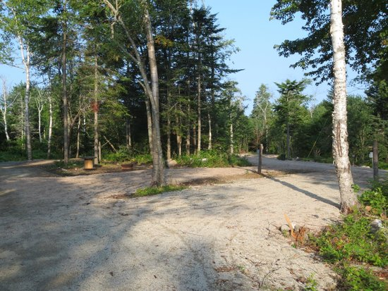 Oceanfront Camping at Reach Knolls: Sites