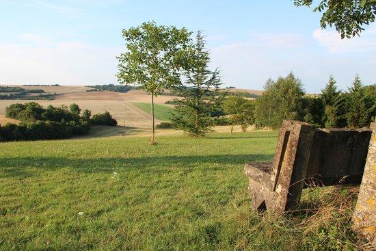 Le Relais de Fontenailles : Vue sur la campagne environnante
