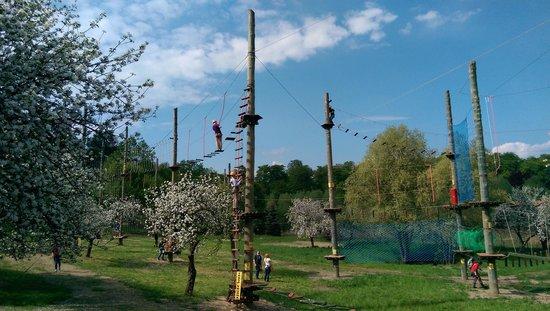 Park Linowy Lagow Lubuski