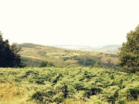 Bike Park Wales: Amazing views from the trails