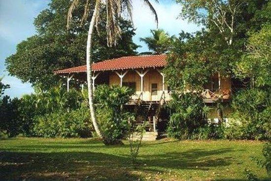 the Casa Grande