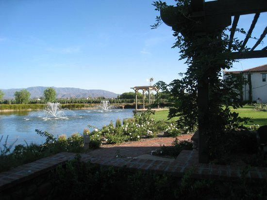 Ponte Vineyard Inn : view from our room patio