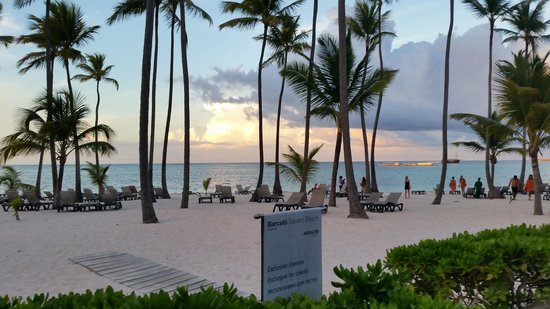 Barcelo Bavaro Beach - Adults Only: Beautiful picture of the beach...never over-crowded.