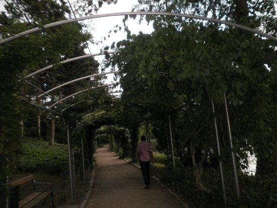 Botanical Gardens (Botanisk Have) : 3