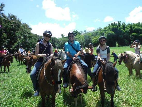 "Carabali Rainforest Park: Horseback riding in El Yunque on ""Robin,"" ""Beach Boy,"" and ""Turbine"""