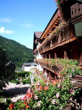 Harmony's Hotel Kirchheimerhof: Dalla mia finestra