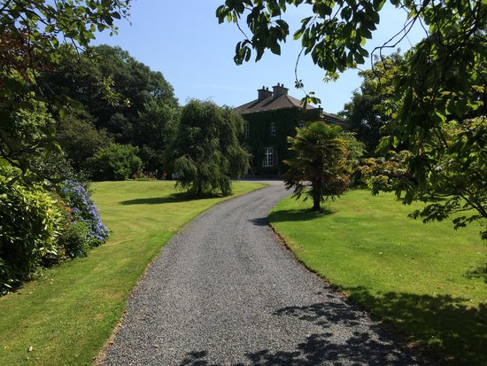 Foxmount Country House: Driveway