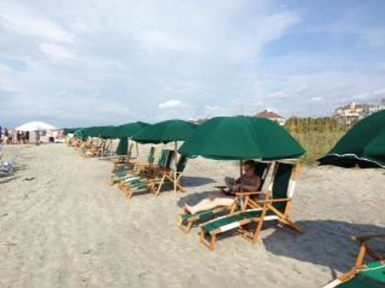 Wild Dunes Resort : The rental chairs and umbrellas that get blanketing on the entire beach before you wake up