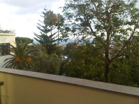 Hilton Sorrento Palace : GATO POR LEBRE
