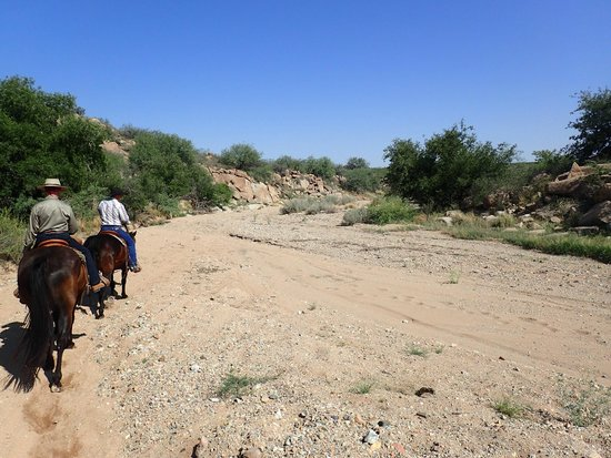 Tombstone Monument Ranch: Scene from our trail ride