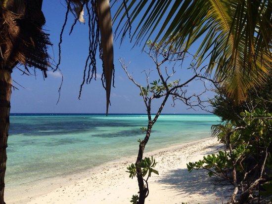 Fun Island Resort : Spiaggia