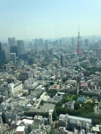 View from Tokyo City View at top of Mori Tower - Picture of Tokyo City View O...