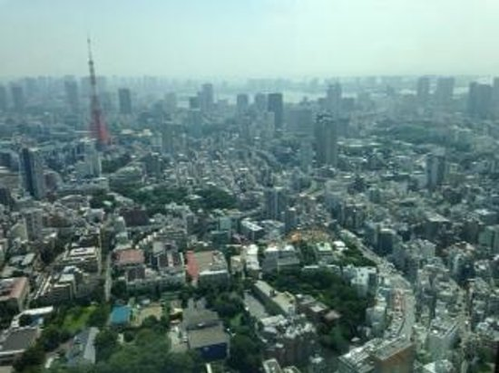 View from Tokyo City View at top of Mori Tower - Photo de Tokyo City View Obs...