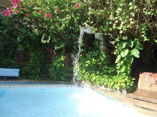 Pousada Porto Verde: Jardinagem na área da piscina